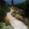 giardino naturalistico sul lago di como (14)