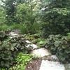 giardino naturalistico sul lago di como (19)