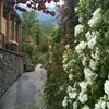 giardino naturalistico sul lago di como (26)