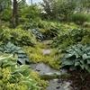giardino naturalistico sul lago di como (28)