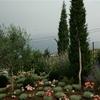 giardino naturalistico sul lago di como (29)