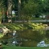 giardino in mariano comense (6)
