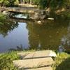 giardino in mariano comense (9)