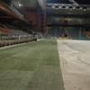 realizzazione campo di calcio - Stadio Marassi di Genova