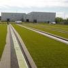 campo da calcio di Lignano Sabbiadoro (1)